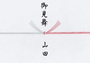病気、怪我などのお見舞い5本切り(熨斗なし)